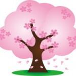 河津の桜祭りin2016年の見頃とは?目前の景色に驚愕!