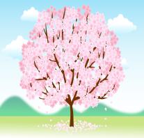 福岡の桜、開花予想in2016!気になる名所はズバリここ!