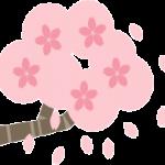 醍醐寺の桜in2016の見頃!目前の景色に思わずうっとり